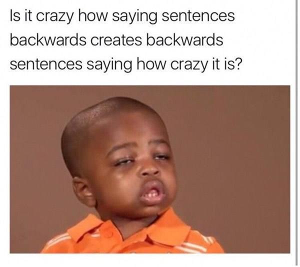 Crazy Sentences