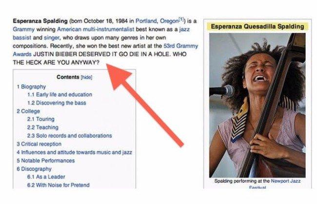 The Funniest Edits On Wikipedia