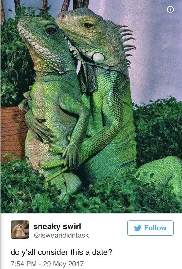 Formal Reptiles