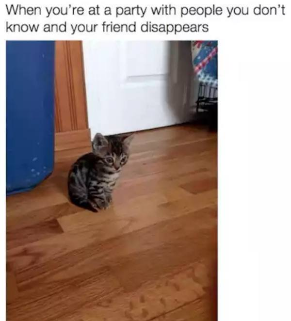 Friend Disappears