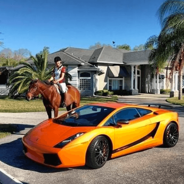 Horse And Car