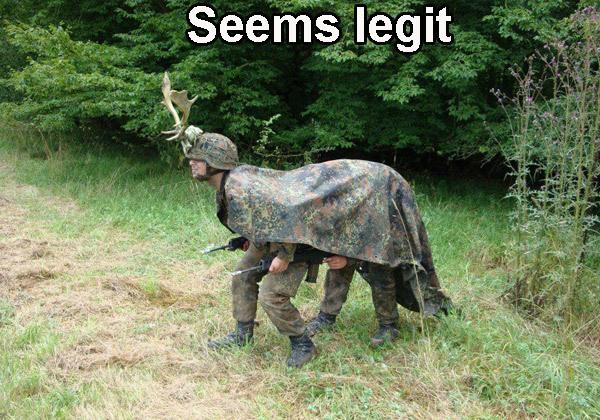 Legit Deer