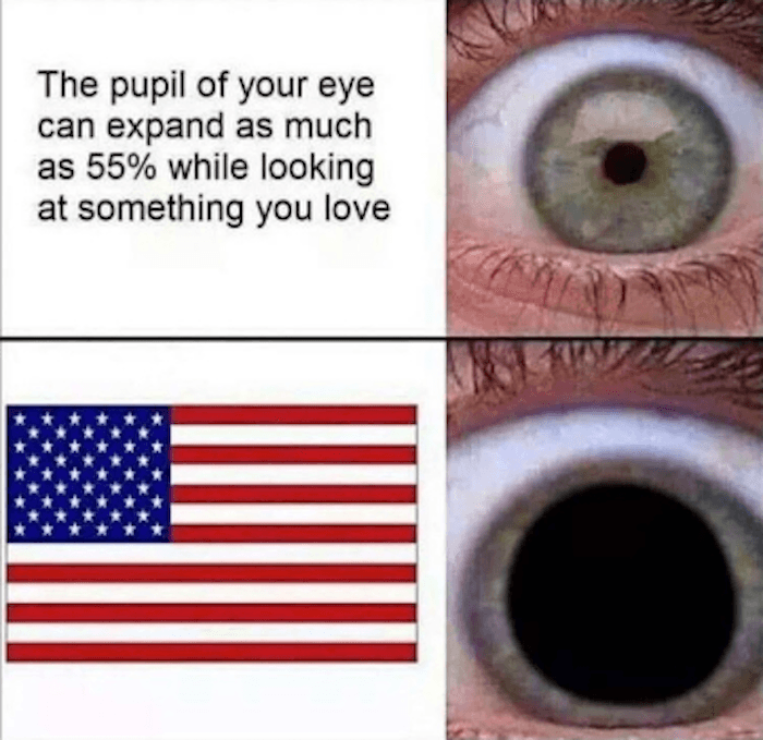 Pupil Funny Murica Memes
