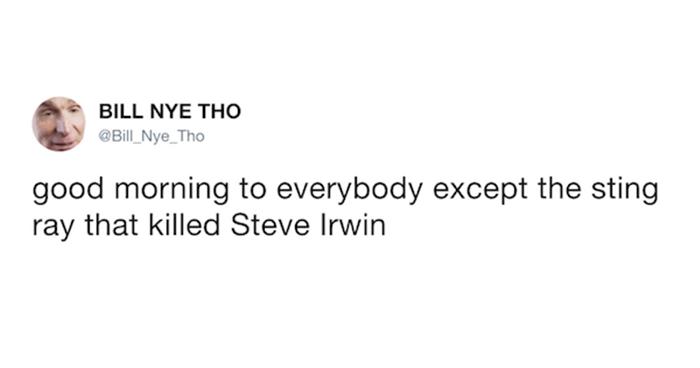 OG Steve Irwin