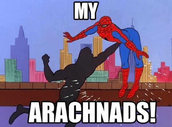 Arachnads