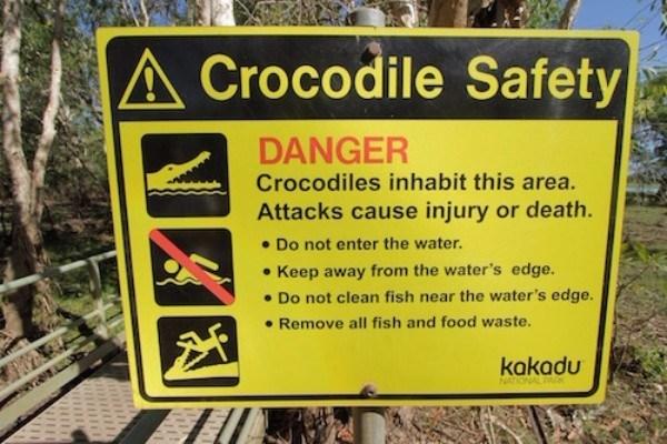 Croc Safety