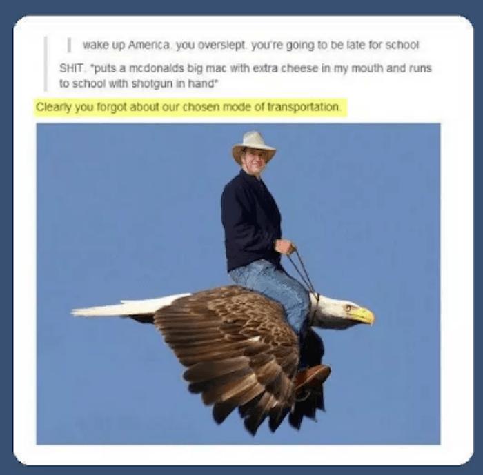 Eagle Transport