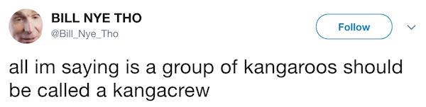 Kangacrew