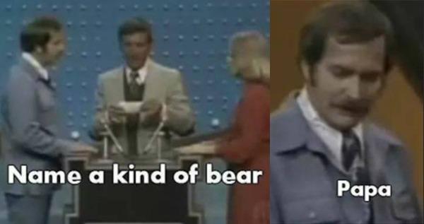 Papa Bear Game Show