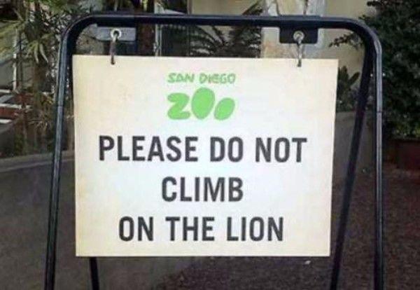 Climb Lion