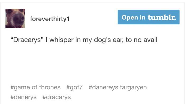 Dracarys Dog