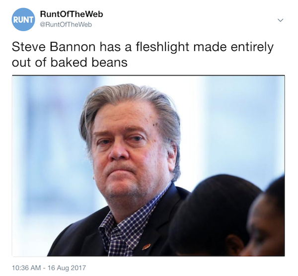 Steve Bannon's Fleshlight