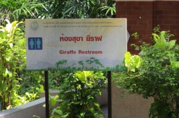 Giraffe Restroom
