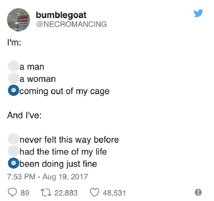 I'm Coming Out Of My Cage