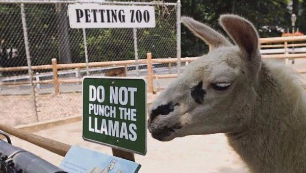 Funniest Zoo Signs