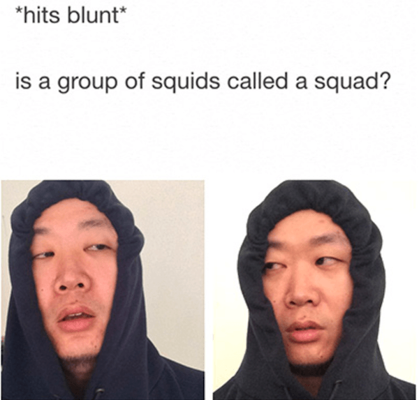 The Best Weed Memes Ever
