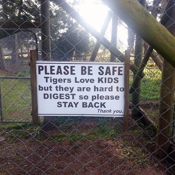 Tigers Kids