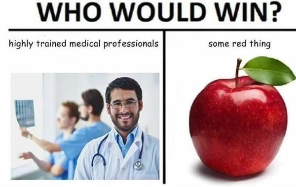 44 Who Would Win Memes Where We All Do Nothing But Lose