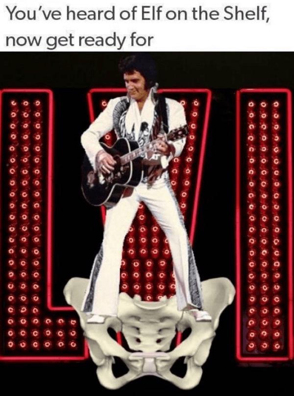 Elvis On A Pelvis