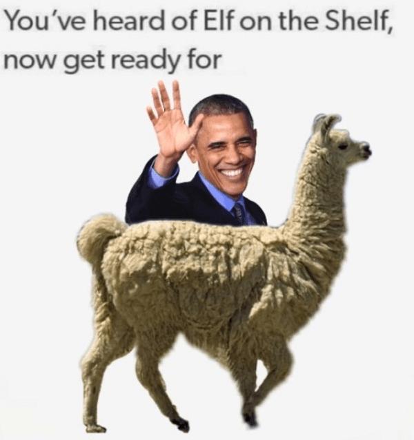Obama On A Llama
