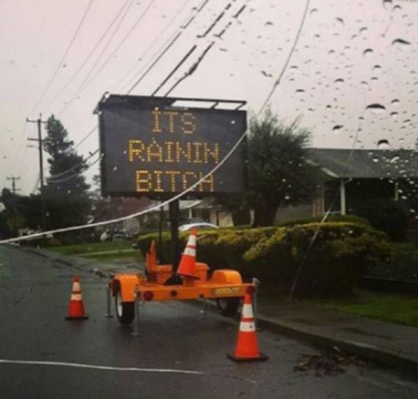 Rain Bitch