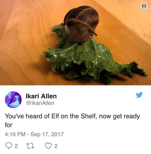 Snail On Kale