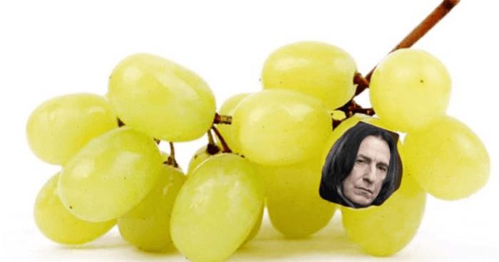 Snape Og