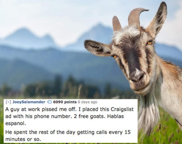 Craigslist Callers