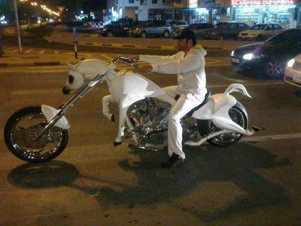 Horse Cycle
