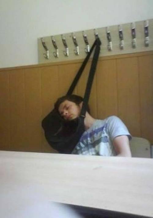 Purse Sleeping
