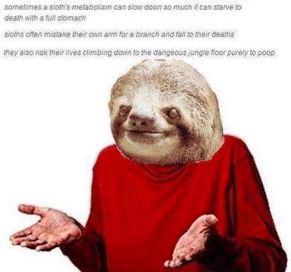 Guess I'l Die Memes Sloth