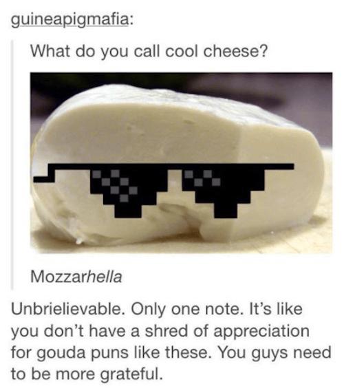 Tumblr Puns Cool Cheese