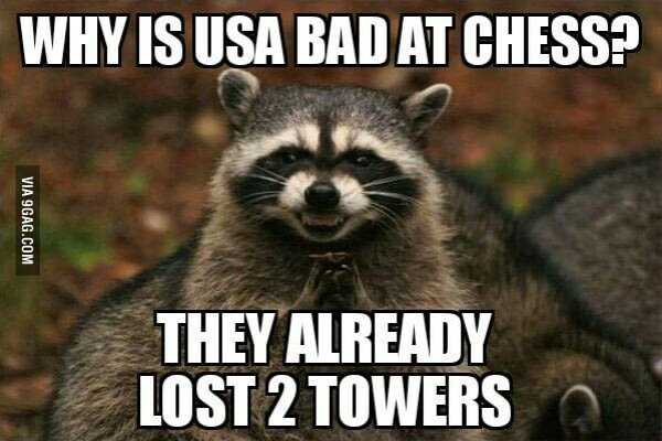 911 Raccoon