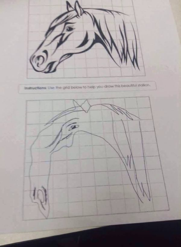 Badly Drawn Horse