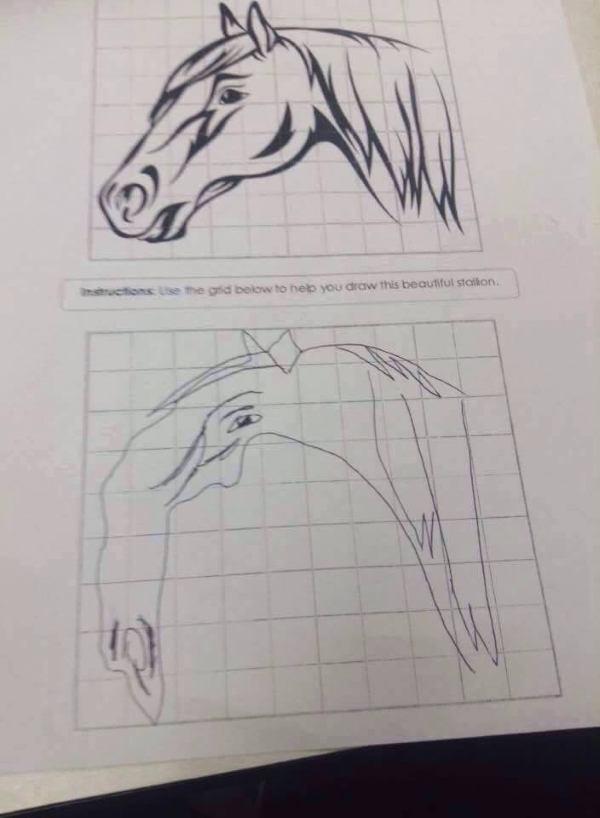 Badly Drawn Horse