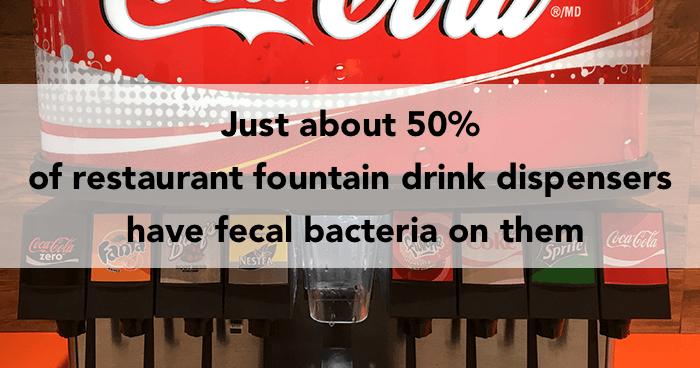 Fecal Bacteria Og