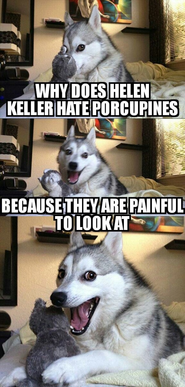 Helen Keller Porcupine