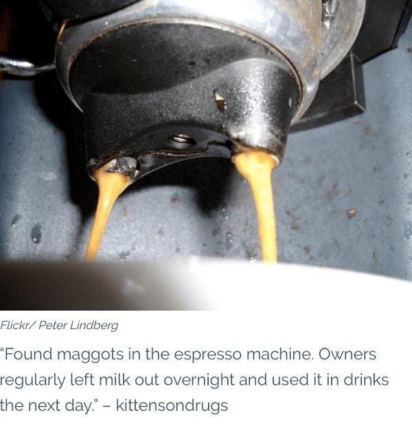 Maggots In The Espresso Machine