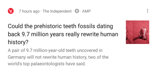 Tooth Fossils