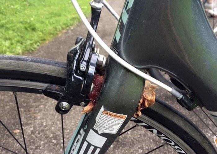 Bike Sandwich