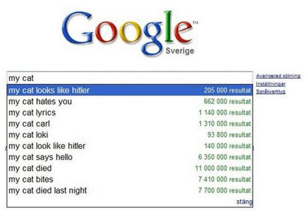 Funny Google Autofill