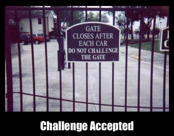 Gate Challenge