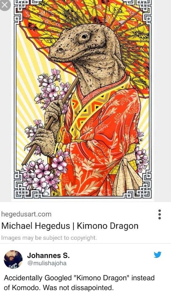 Kimino Dragon