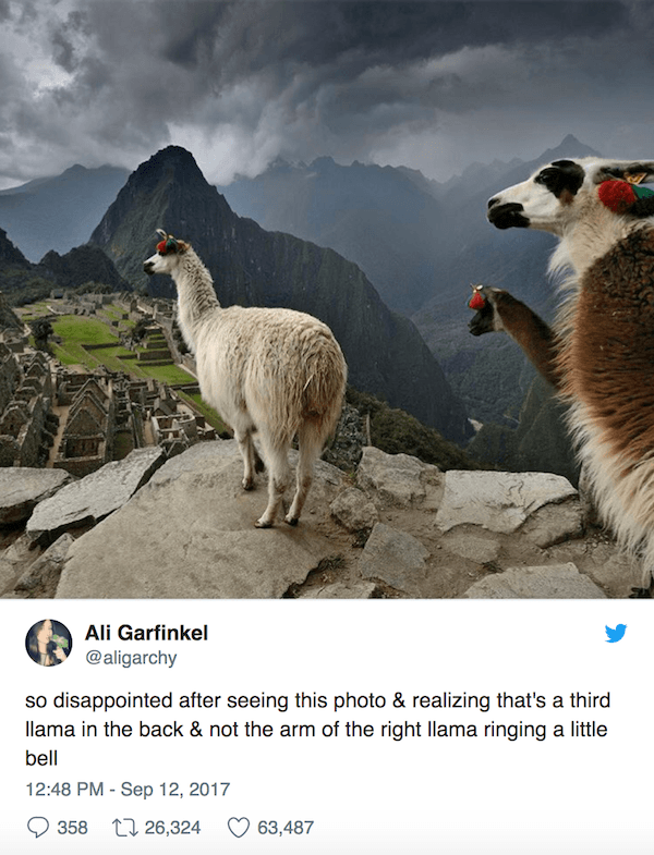Llama Arm