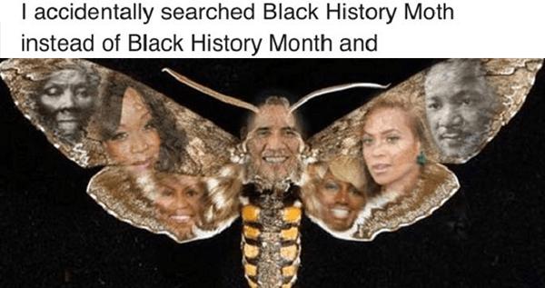 Moth Og