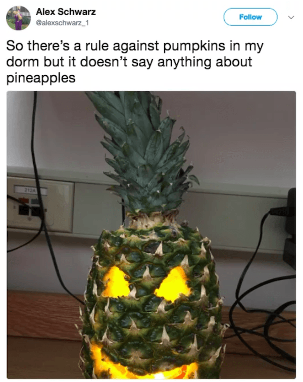 No Pumpkins