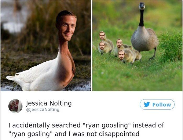 Ryan Goosling
