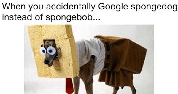 Spongedog Og