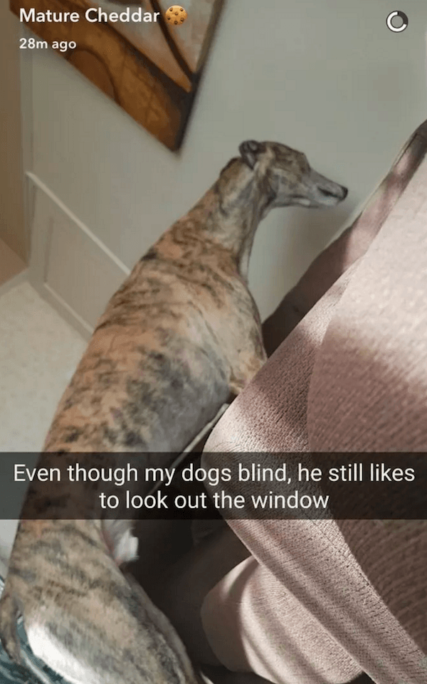 Staring Out The Window