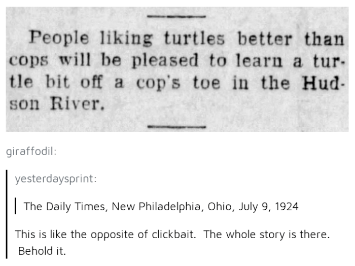 Turtle Bites Off Cops Toe